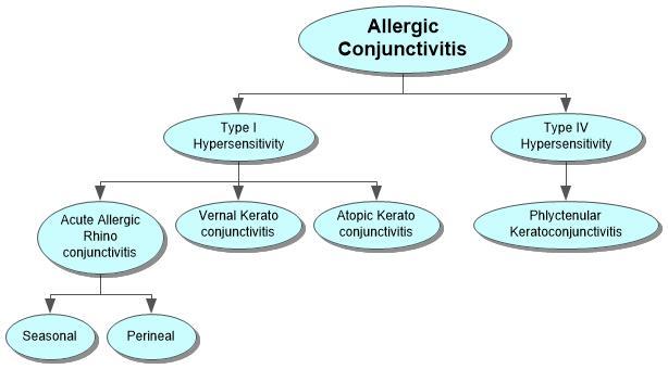 Allergic Conjunctivitis Concept Map