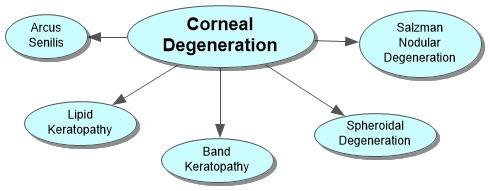 Corneal Degeneration Concept Map