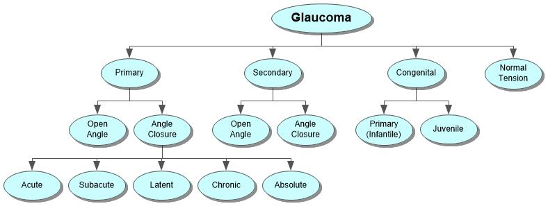 Glaucoma Concept Map