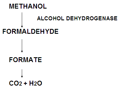 METHYL ALCOHOL POISONING PDF