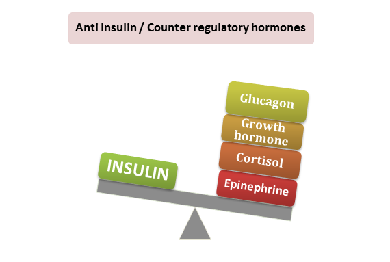 insulin, anti insulin hormones