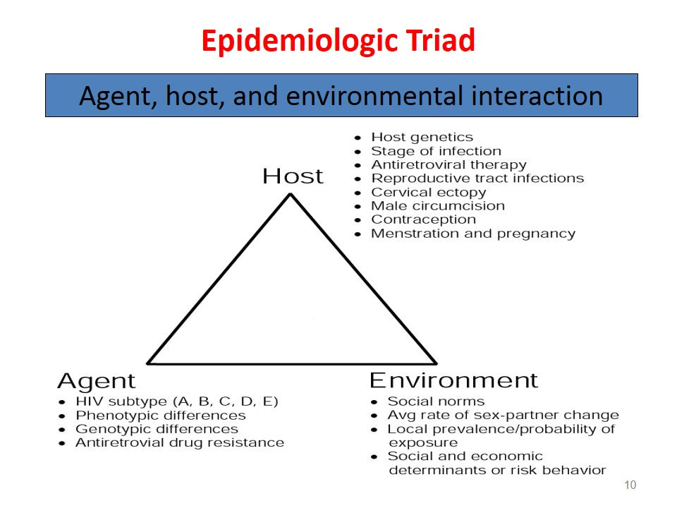 epidemiologic triad